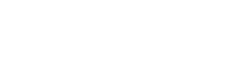 AmWINS Program Underwriters - Reverse Logo